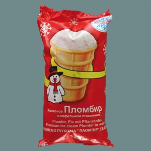Ice Cream (7)