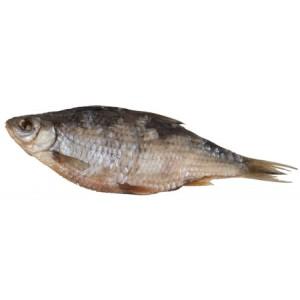 Gedroogde vis (10)